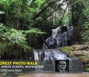 Karura Forest Night photography - PhotoWalk