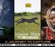 A JOURNEY TO CAPTURE - MASAI MARA